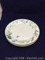 Corelle By Corning Dinner Plates