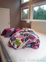 Duvet, Covers and Pillows A