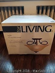 Cecilia Ceiling Mount Light Fixture new in box