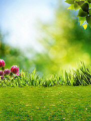 Spring assorted photography backdrops and floordrops--$50