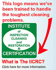 We Have Trained & Certified Tile/Carpet Cleaning Technicians Kitchener / Waterloo Kitchener Area image 3