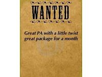 Private PA. must be discreet and easy going