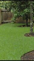 Clients for spring clean up and summer yard care needed