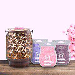 Need a Scentsy rep? I'm YOUR GIRL !