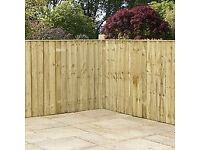 Fencing, Decking, Paving or just a winter clear up!