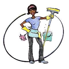 Experienced Cleaner:
