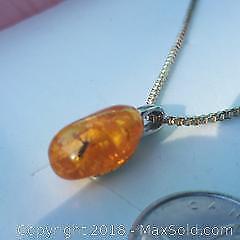 Amber pendant with insect sterling necklace.