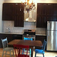 Newly Renovated 1 BDR Apartment in Sandy Hill - $1,995/month