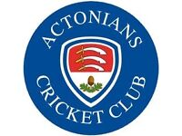 Women cricket players required for club in Ealing/ Acton/ Hammersmith area