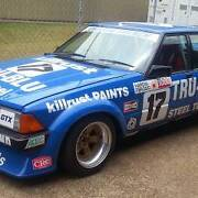 FORD XD TRU BLU DECAL KIT 1980 COMPLETE for DJR BATHURST RACECAR Toowoomba Toowoomba City Preview