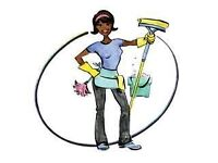 Domestic cleaning service, spring cleans, house cleaning, carpet cleaning, end of tenancy etc