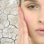 Elixir Organic Skin Care