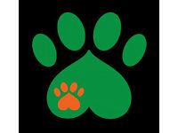 FOUND - EDINBURGH AREA - URGENT - BLACK & WHITE MALE CAT - FATAL INJURY - MORE INFO IN DESCRIPTION