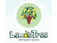 Montessori Teacher Required for Accredited Montessori Nursery in South Croydon