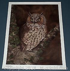 """Donna Richardson """"Western Long-Eared Owl"""" limited edition print, s/n"""