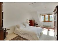 Room to rent in spacious modern house close to Pantiles
