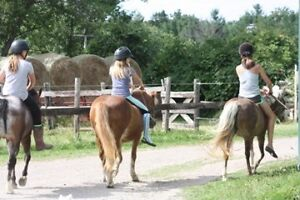 March break horse riding camp