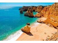 Algarve Restaurant looking for an Investor