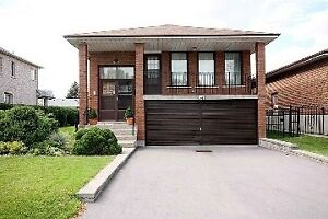 ★Looking for house rent?★ NorthYork / Scarborough Area