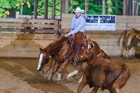 Competitive Western Lessons - Rodeo, Cutting, Cowhorse