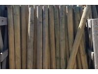 Treated Fence Posts for sale