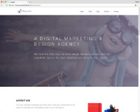 Simple Website For Your Business Or Blog - $100