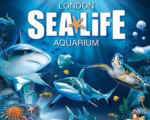 sealife aquarium 2 for 1 voucher in gumtree