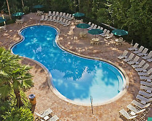 Vacation Village Parkway Timeshare, Even Year, 55,500 points