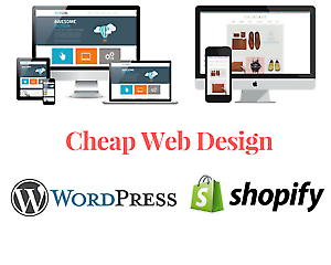 Expert Web Developers and Web Designers Team