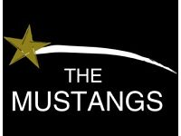 The Mustnags Band