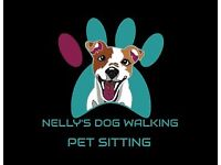 NELLY'S DOG WALKING& PETSITTING