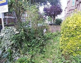 The Garden of Weedn Garden Clearence Specialists in