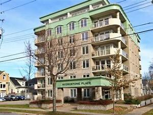 Immaculate Condo near Hydrostone - 3051 Iseville St., Suite #201