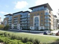 Absolutely Stunning Luxury One bed in Royal Arsenal.