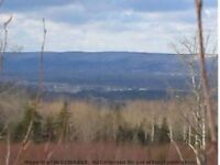 60 Acre Woodlot in West Inglisville; valley view potential