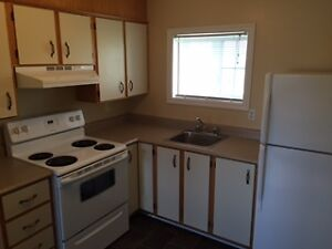 Available April 1st -2 Bedroom Basement Apartment in Mount Pearl