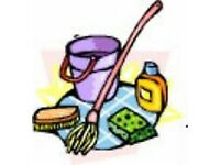 Kristina's cleaning -evening and weekend cleaning including