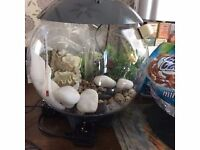 15ltr multi colour changing biorb and accessories