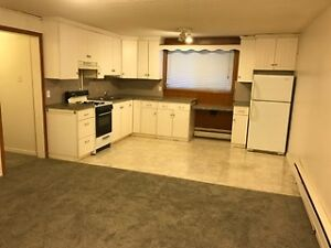 Nice and big one bedroom in 4-unit house by White Av