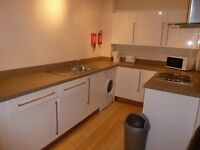 3 BEDROOM FLAT AVAILABLE FROM 01/09/17 IN HEATON, NE6 - £75pppw