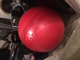 XQ MAX pilates/exercise ball