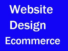Website Design / Ecommerce Website / 400 Sites in Portfolio / 10 Years Experience