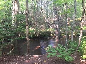 50 Acres on the Winter River