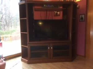 Perfect Entertainment Center for your Cottage