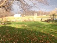Indoor/Outdoor Horse Boarding - Small Private Facility Puslinch
