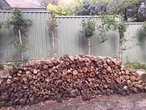 Cut and dried Firewood Chatswood West Willoughby Area Preview