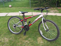 CCM rebel 21 speed mountain bike
