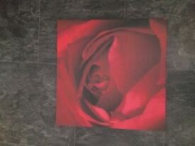 RED ROSE CANVAS PICTURE 19 INCHES X 19 INCHES