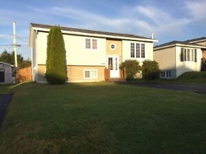 Just Listed 2 Apartment In Mount Pearl. St. John's Newfoundland image 1
