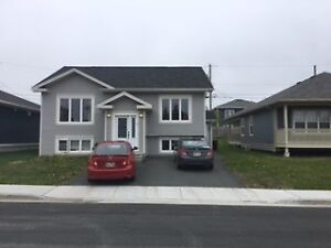 Beautiful Basement Apartment  Airport Heights 21 Galaxy Cres